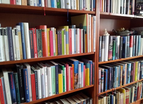 Lesenswerte Sachbücher Regal 2017